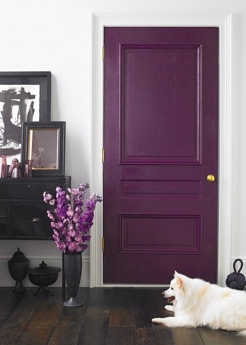 Цвет межкомнатной двери